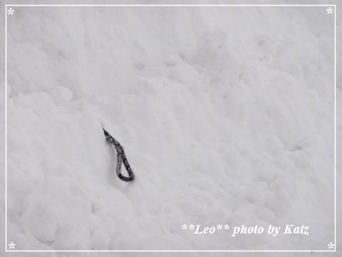 20130310 Leo (11)