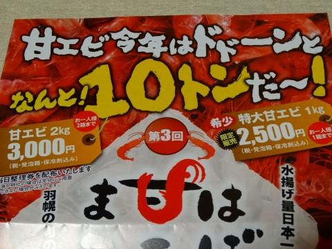 2013 はぼろえびまつり (7)