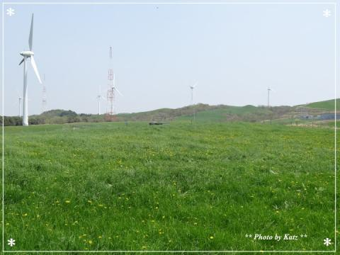 20130528 風景