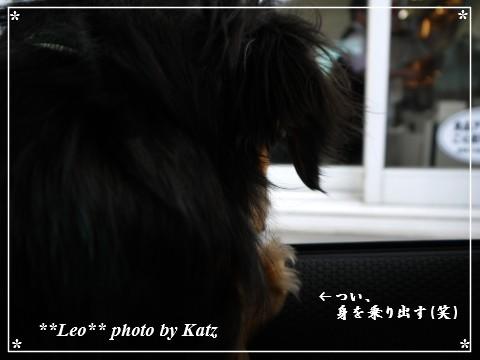 20130420 Leo (4)