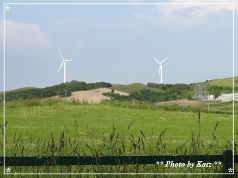 20130702 風景 (4)
