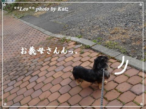 20130616 Leo (19)