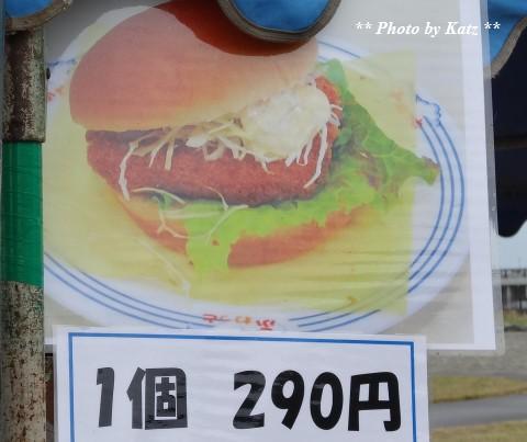 20130727 風車まつり (10)