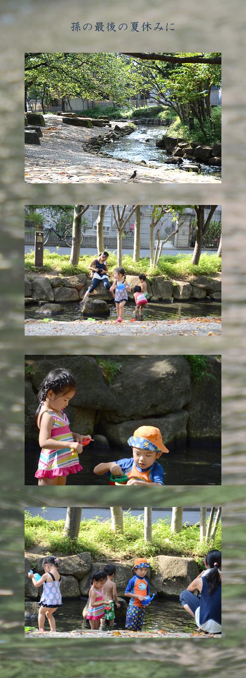 8月30日親水公園1