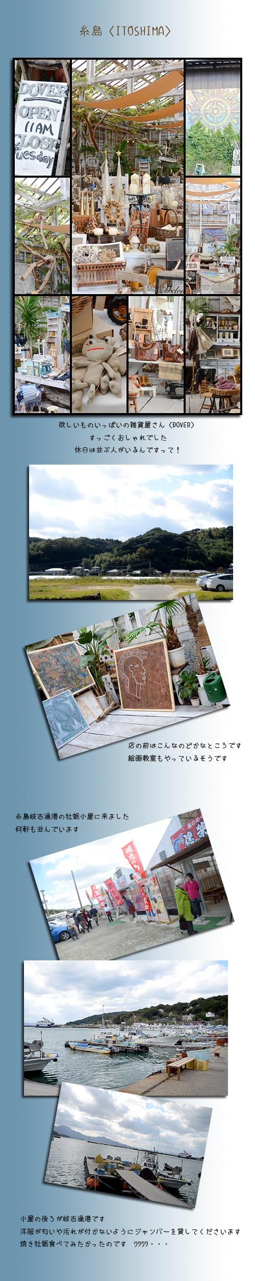 11月21日糸島1