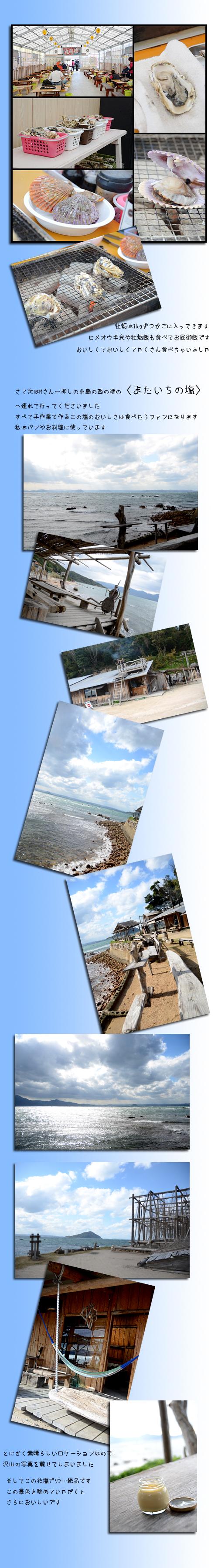 11月21日糸島2