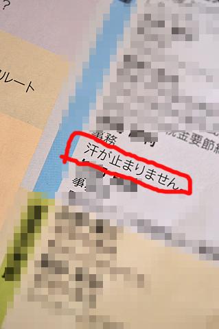 conv0036_20130727174333.jpg