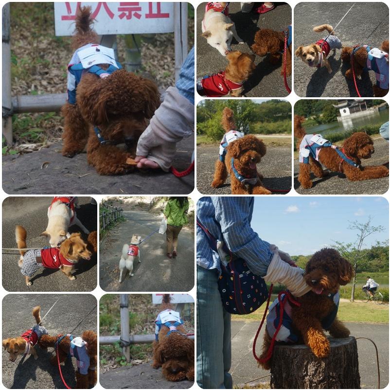 鶴見緑地5