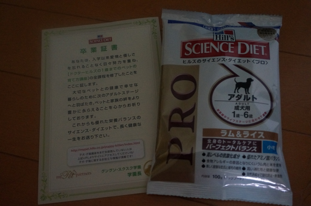 DSC01837.jpg