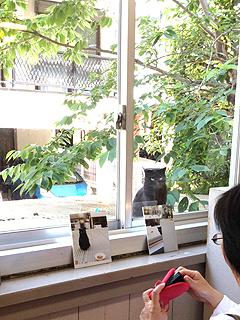 201305monokokuro1.jpg