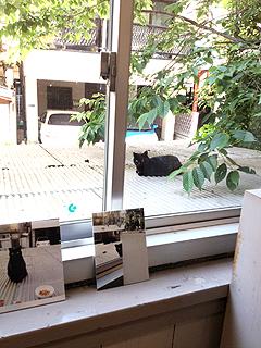 201305monokokuro2.jpg
