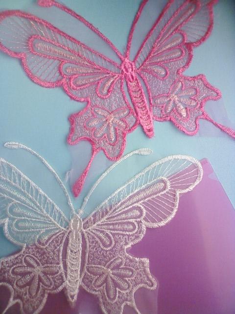butterfly_wing2_e.jpg