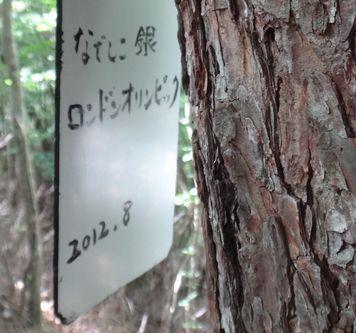 nisizawa201307c.jpg