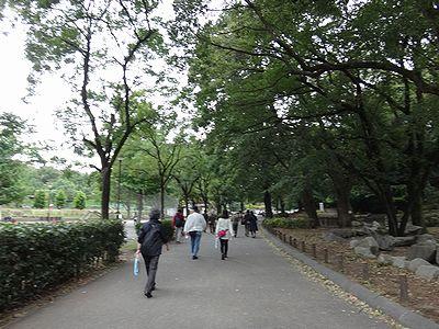 walk201310d.jpg