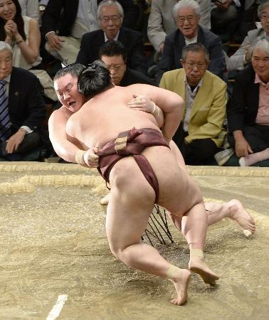 大相撲・白鵬勝ち-