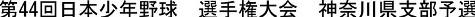 20130529_senshuken_kanagawa-5.jpg