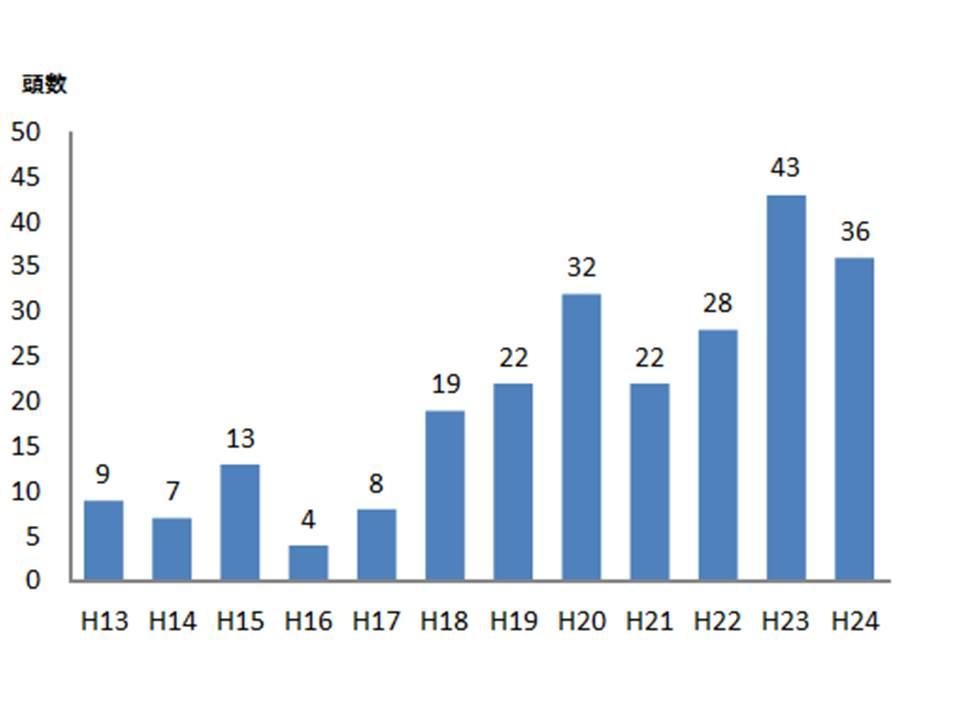 20130119レンタカウ貸出頭数④