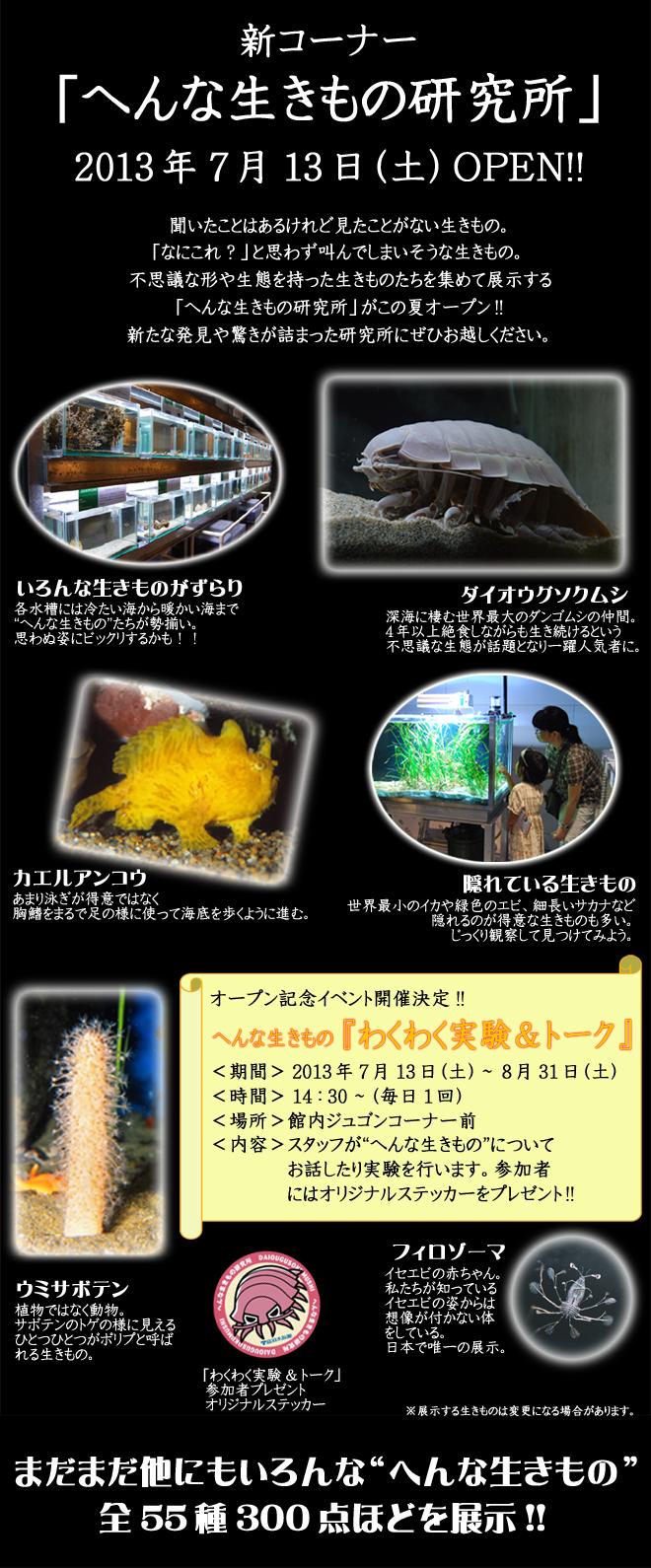 info_head_image_1373709049.jpg