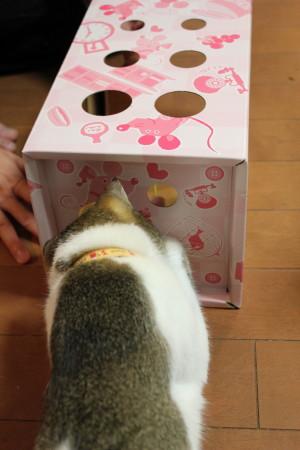 箱おもちゃ1