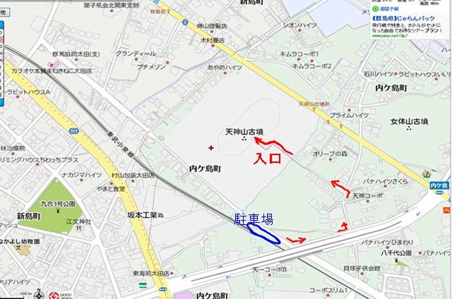 20130817キツネノカミソリ_太田11