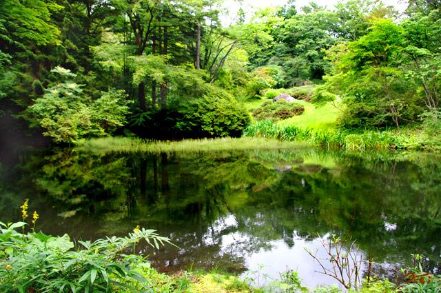 20130826日光植物園17