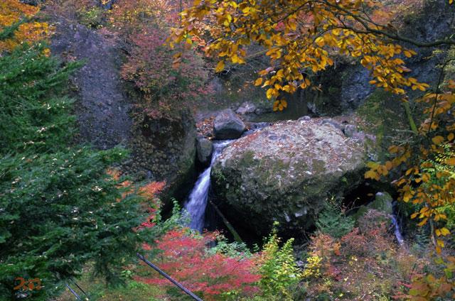 20131109榛名神社16
