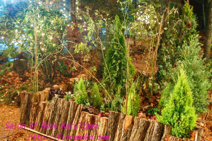garden20131110.jpg