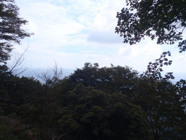 PA060035.jpg