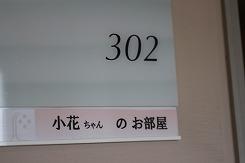 IMG_053107.jpg