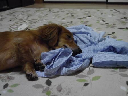 疲れたなぁ~