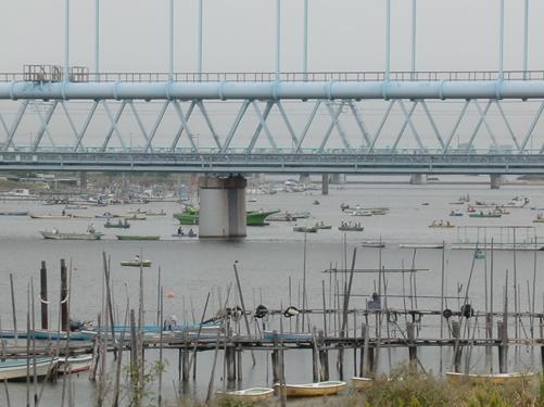 141004 江戸川09