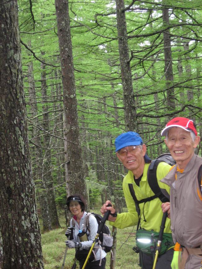 大岩山への道①