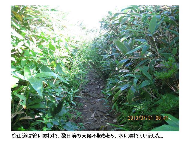 金剛堂山 11