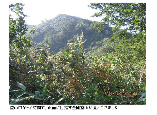 金剛堂山 09