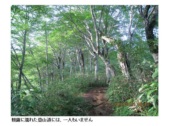 金剛堂山 07