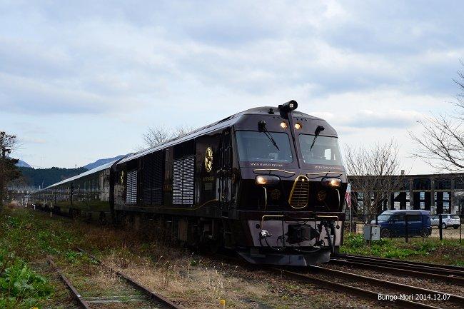 NDF_6648-m.jpg