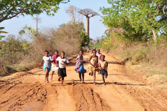 バオバブと少女たち