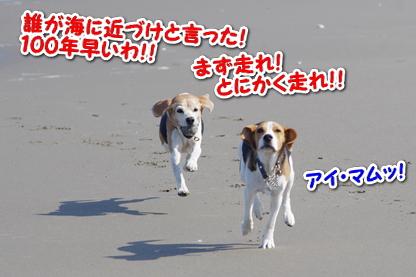 マラソン 4