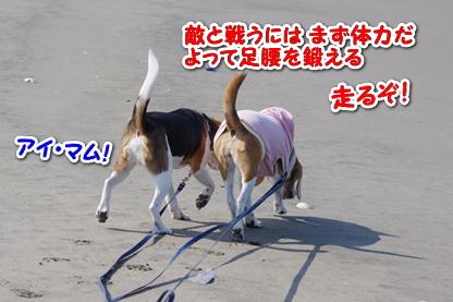 マラソン 1