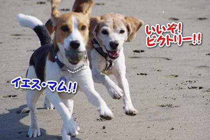 マラソン 9