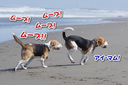 マラソン 7