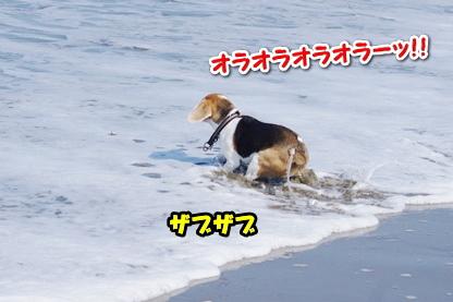 エンジョイ 2