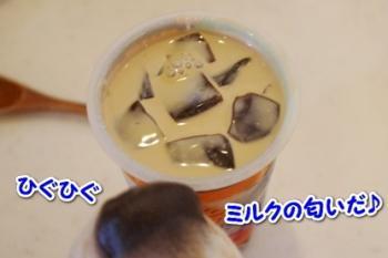 モラ コーヒーゼリー2