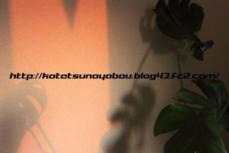 DPP_0862.jpg