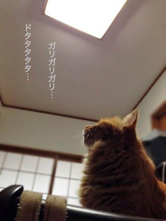 天井2014.2.5