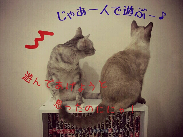 fc2_2013-07-02_19-48-55-755.jpg