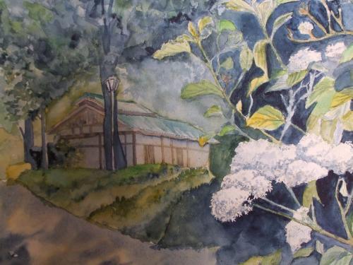 奈良 明日香 山紫陽花