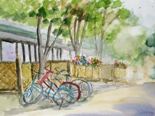 奈良女子大 自転車