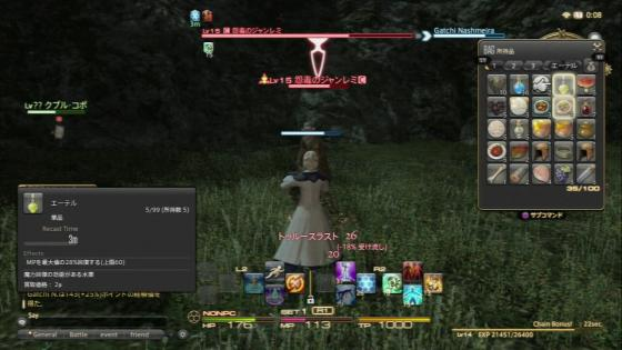 FF14-0-3 (11)