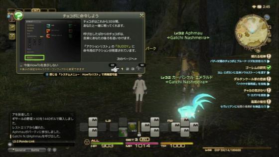 FF14-4-3 (10)